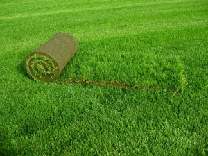 Рулонный газон: алгоритм укладки