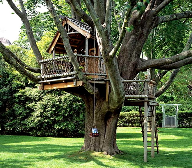 Дома на дереве - фото