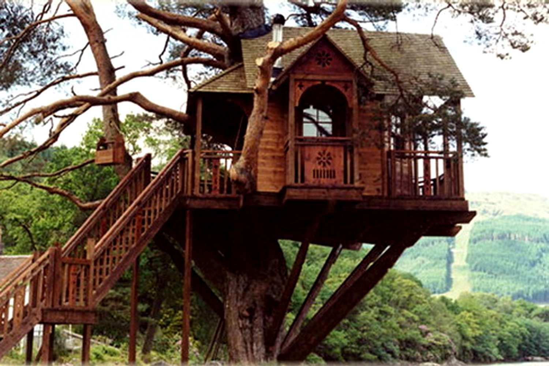 Секс на дереве дома 2 фотография