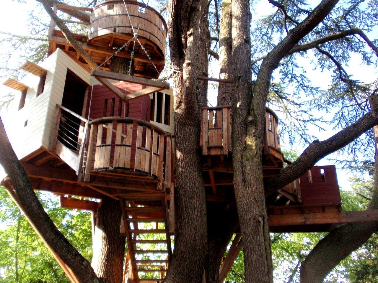 Дизайн дома на дереве