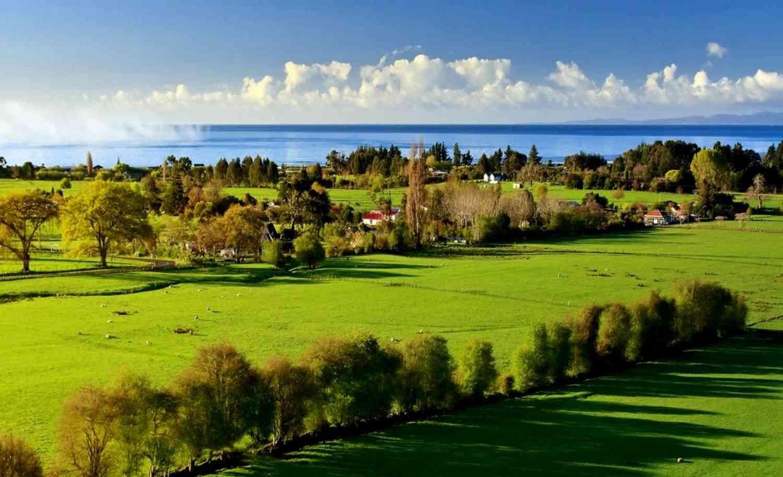 Новые тенденции на рынке земельной недвижимости
