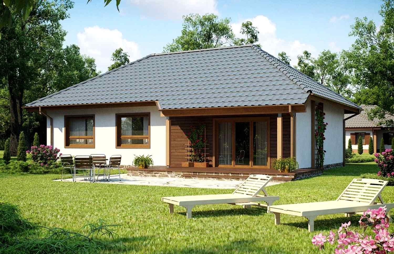 Одноэтажные загородные дома