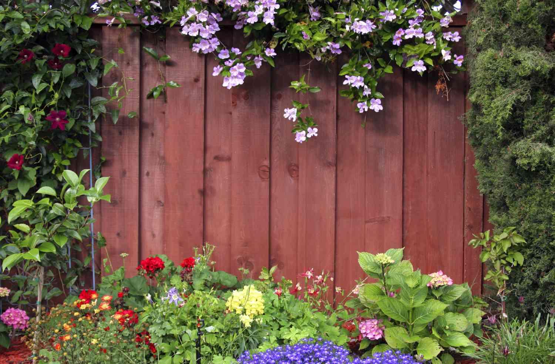 Забор для сада