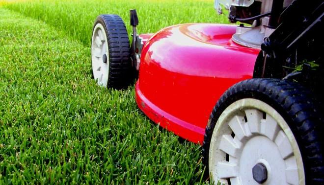 Подбираем газонокосилку для сада