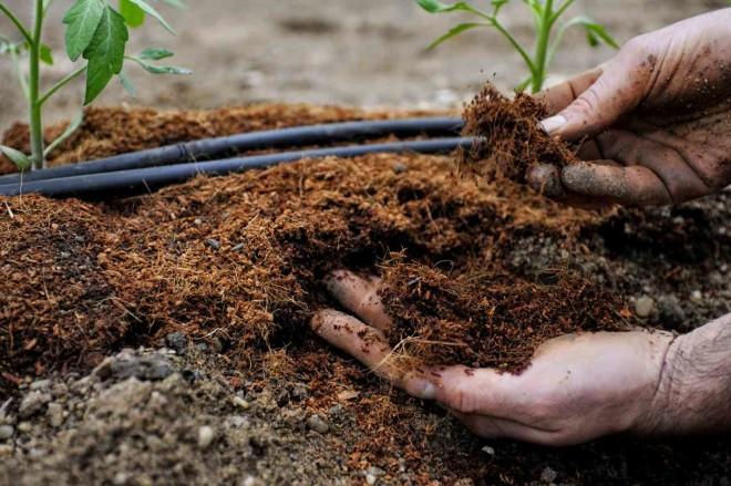 Как удобрять почву весной - видео обзор