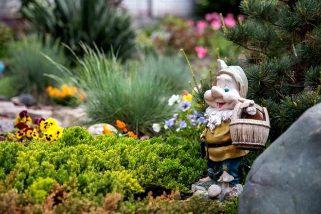 Белоснежные мечты в вашем саду