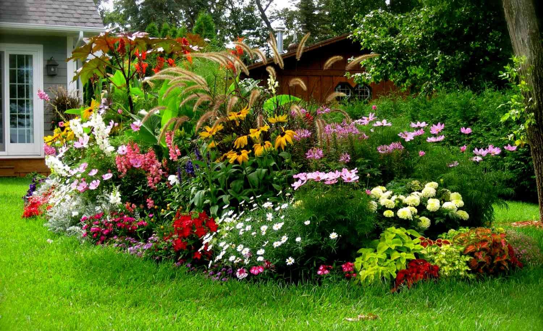 Цветник и огород?