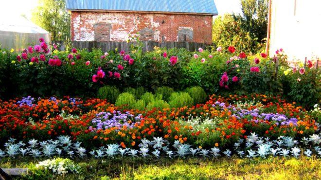 Цветник и огород