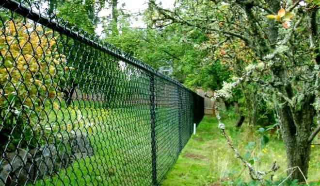 Все о заборе из сетки-рабицы