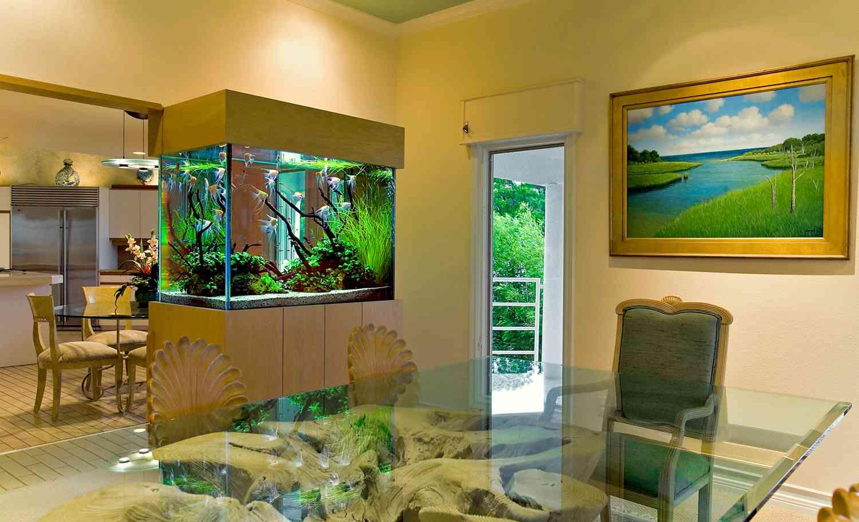 Элитный интерьер и аквариум