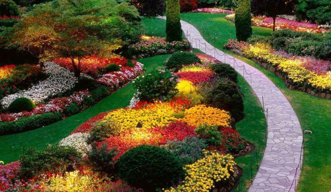 Ландшафтный дизайн и его особенности