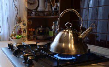 Какой чайник выбрать для газовой плиты