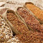 Как выбрать качественные семена