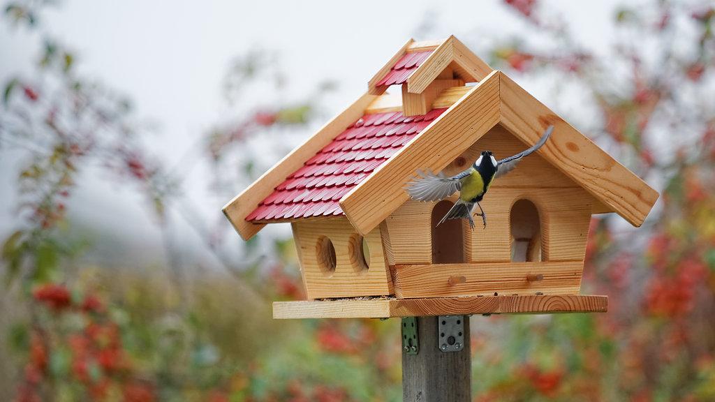 Декоративные скворечники и кормушки для птиц из дерева