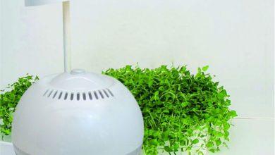 «Ионизатор воздуха» — для чего он необходим?
