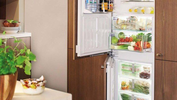 Преимущества и недостатки встраиваемых холодильников