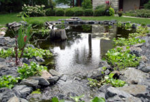 Пруд в саду загородного дома