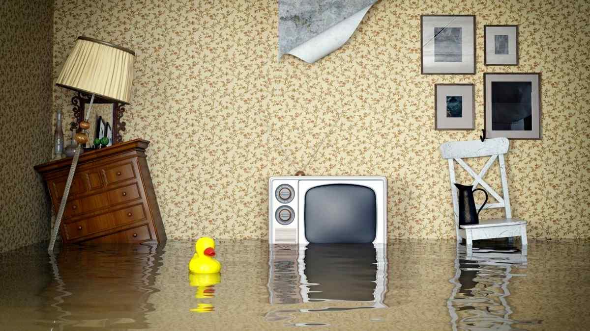 Что делать, если случился потоп