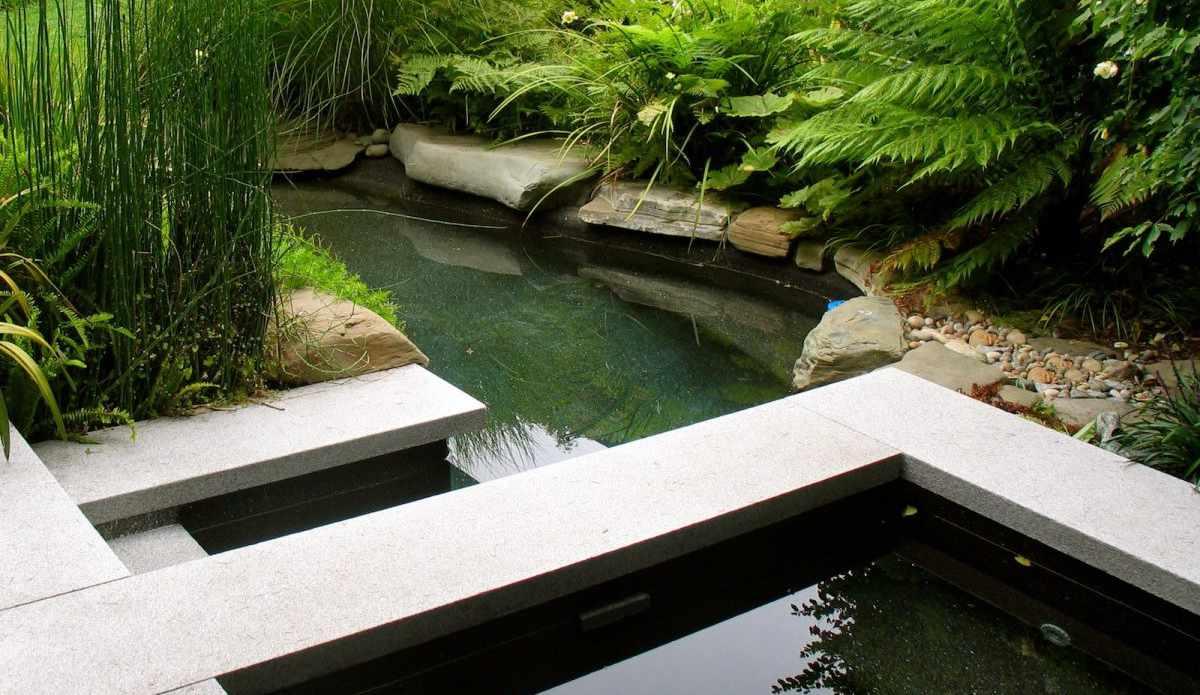 Ландшафтный дизайн: садовый пруд