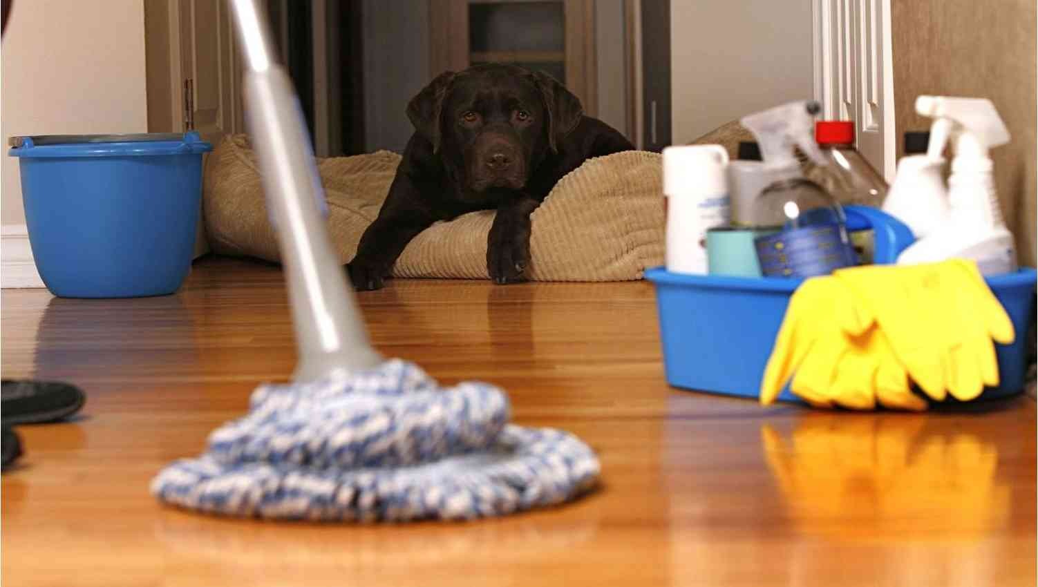 Как делать уборку после ремонта
