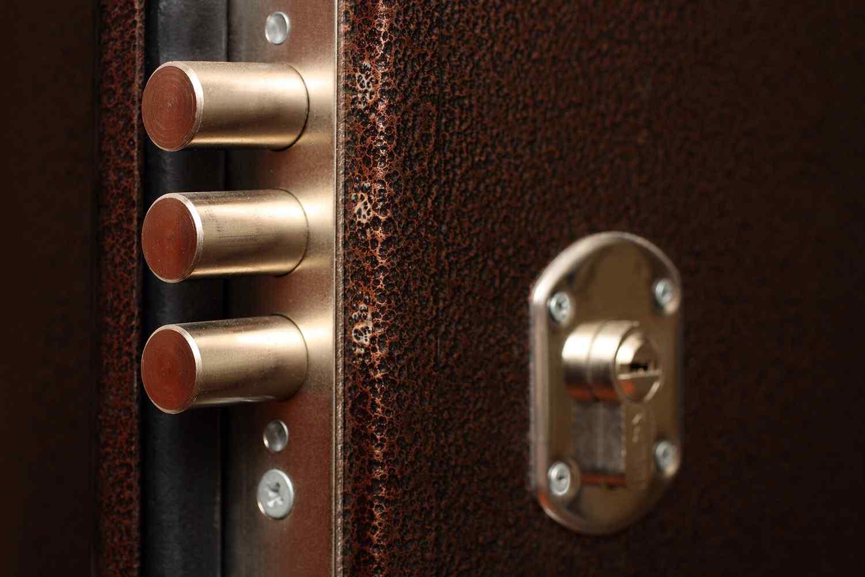 Замки для дверей - описание различных моделей