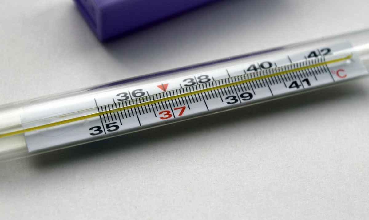 Какой выбрать градусник