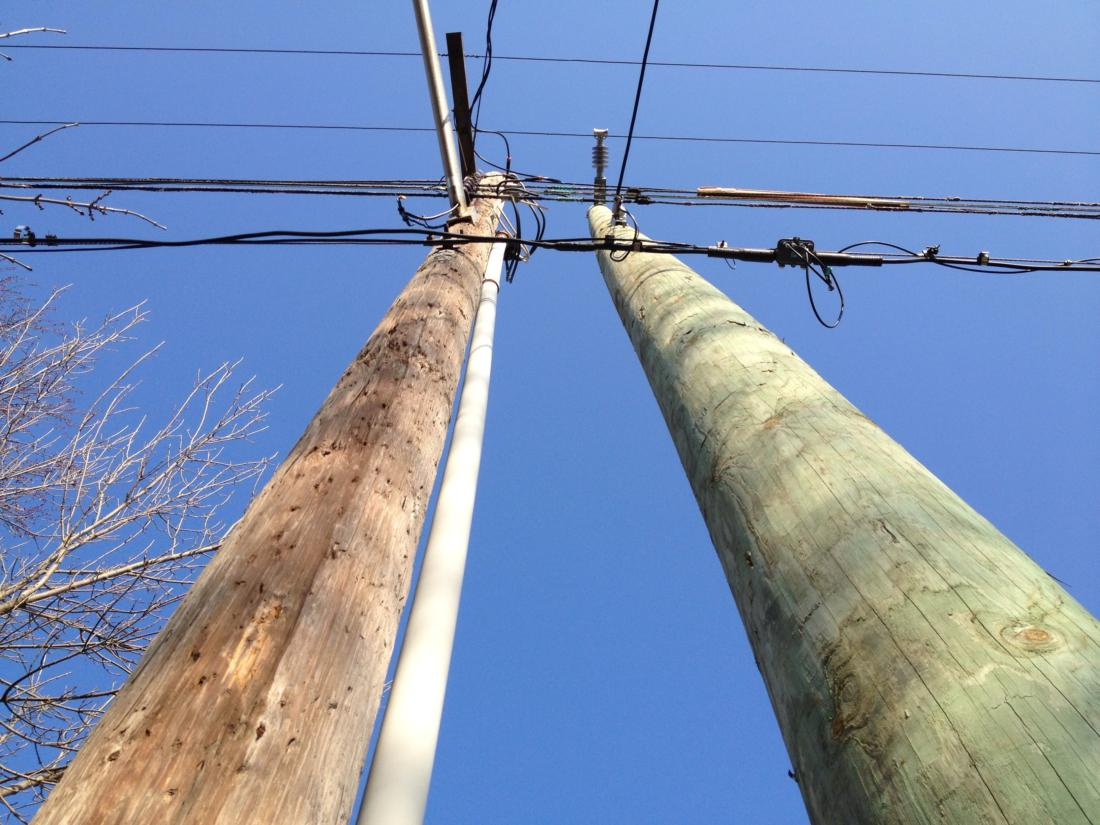 Деревянные столбы ЛЭП